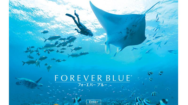 『FOREVER BLUE(フォーエバーブルー)』