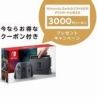 Nintendo Switch 本体【Joy-Con (L) / (R) グレー】+ ニンテンドープリペイド番号3000円分