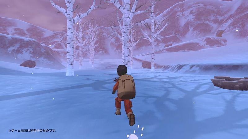 GBC『ポケモン剣盾』冠の雪原・ワイルドエリア