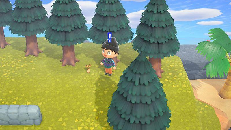 『あつまれ どうぶつの森』キノコ