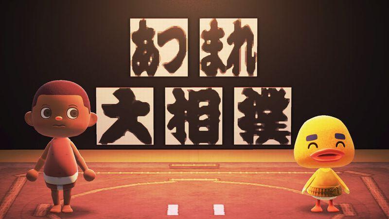 あつ森✕相撲協会